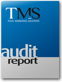 marketing strategy audit report - Total Marketing Solutions